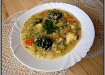 Zeleninová rychlá polévka