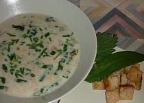 Chlebová polévka s medvědím česnekem a kopřivou