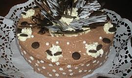 Čoko tvarohový dort