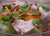 Zeleninový  salát s Čerstvým sýrem mexiko a bazalkou