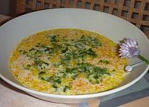 Pampelišková polévka s mrkví a pažitkou