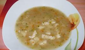 Polévka z pangase II.