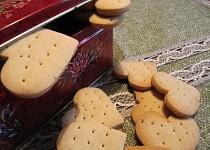 Sójové sušenky