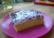 Borůvkový letní koláč s želatinou a tvarohem