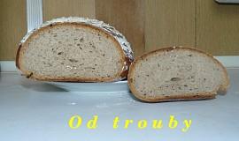 Kváskový chléb - verze 1.1