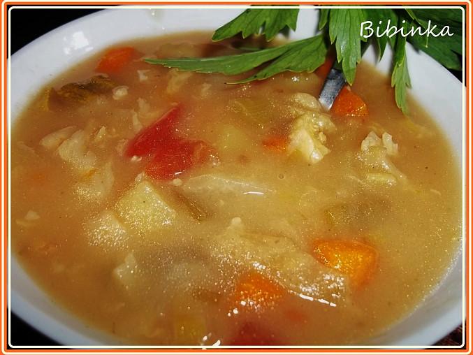 Mnohazeleninová zdravá polévečka prostá koření