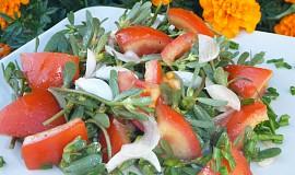 Salát ze šruchy
