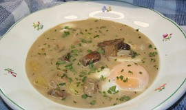 Bílá houbová polévka