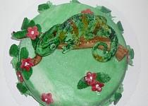 Dort chameleon jemenský