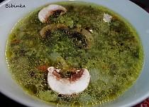 Netradiční špenátová polévka ze špenátového pudinku