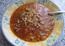 Polévka z hlívy ústřičné se zeleninou