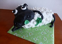 Dort ovečka Shaun 2