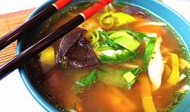 Kuřecí polévka s pastou Miso