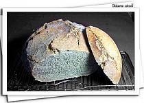 """Pšenično-žitný chléb (""""prvňáček"""")"""