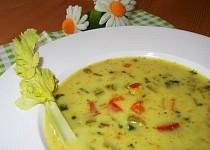 Exotická čočková polévka
