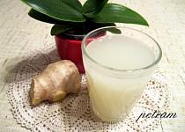 Kvašená zázvorová limonáda (ginger beer)
