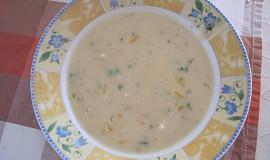 Fazolová krémová polévka