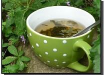 Fermentovaný rybízový čaj