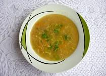 Vločková polévka s cibulkou a mrkví