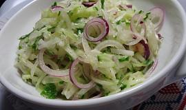 Salát cibulář