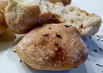 Chlebohousky alias chlebánky
