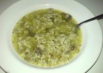 Rybí polévka samotáře Rermora