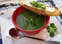 Polévka s polníčkem