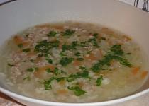 Moje polévka z mletého masa