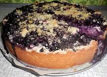 Borůvkový koláč speciál