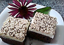 Čokojogurtové řezy s kokosovým krémem