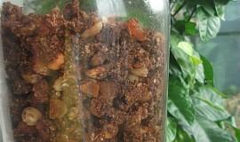 Pomerančovo-kakaová granola
