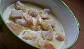 Rychlá polévka