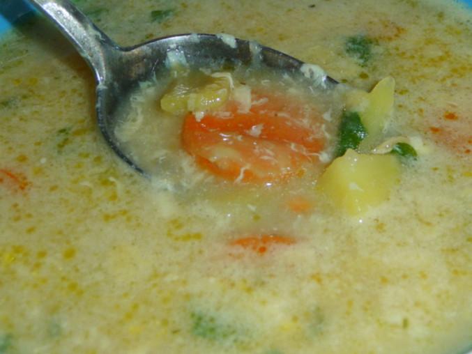 Kopřivová polévka II.