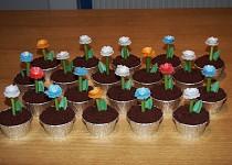 Muffiny Květináče