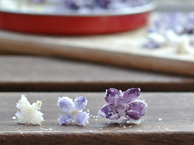 Kandované jedlé květy: šeřík
