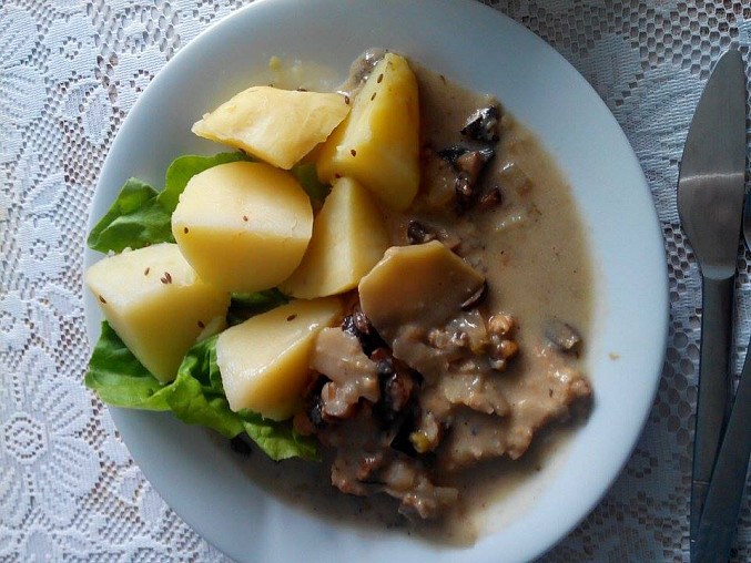 Včerejší kotleta na houbách, ale místo brevné rýže byly brambory a salát.