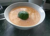Italská rajčatová polévka LFR