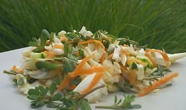 Zelný salát se šruchou