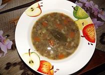 Čočková polévka nakyselo se zeleninou a hlívou
