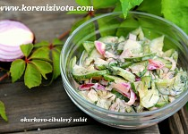 Okurkovo-cibulový salát se zakysankou (trochu jinak)