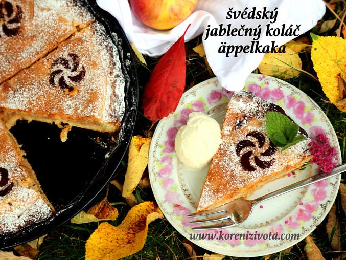 Švédský jablečný koláč äppelkaka