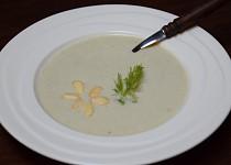Fenyklovo-mandlová polévka