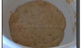 Staré těsto – old dough – pâte fermentée
