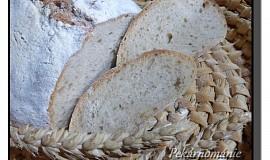 Chleba kynutý kefírovou houbičkou