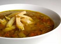 Zeleninová polévka s celestýnskými nudlemi a pestem z medvědího česneku
