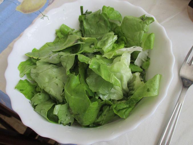 Letní hlávkový salát s meduňkou a koprem, Hlávkový salát