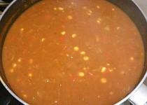 Mexicka polévka s římským kmínem