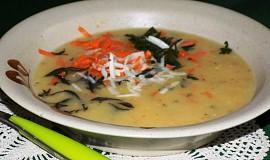 Česneková polévka trochu jinak