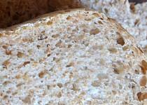 Zimní chlebík z DP