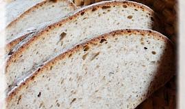 Chleba z ovocné fermentované vody